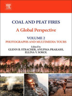 Coal and Peat Fires