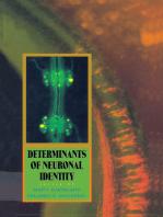 Determinants of Neuronal Identity