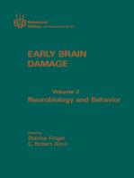 Early Brain Damage V2