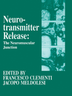 Neurotransmitter Release the Neuromuscular Junction