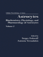 Astrocytes Pt 2