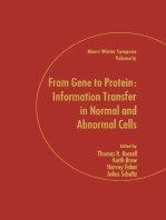 From Gene to Protein