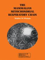 The Mammalian Mitochondrial Respiratory chain