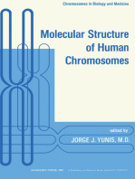 Molecular Structure of Human Chromosomes