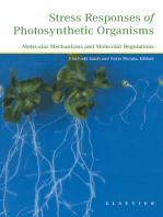 Stress Responses of Photosynthetic Organisms