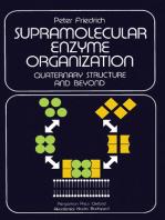 Supramolecular Enzyme Organization