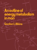 An Outline of Energy Metabolism in Man