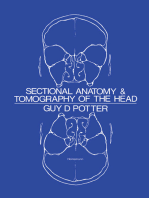 Sectional Anatomy and Tomography of the Head