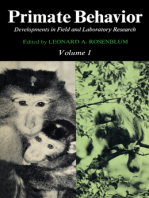 Primate Behavior