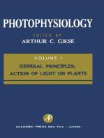 Photophysiology