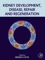Kidney Development, Disease, Repair and Regeneration