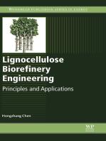 Lignocellulose Biorefinery Engineering
