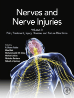 Nerves and Nerve Injuries