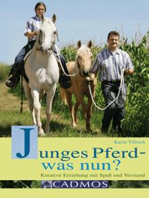 Junges Pferd - was nun?: Kreative Erziehung mit Spaß und Verstand