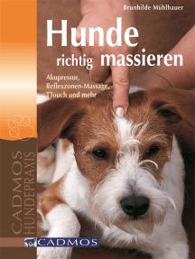 Hunde richtig massieren: Akupressur, Reflexzonen-Massage, TTouch und mehr