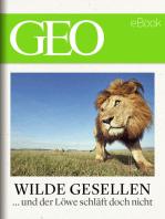 Wilde Gesellen