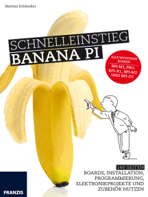 Schnelleinstieg Banana Pi: 160 Seiten Boards, Installation, Programmierung, Elektronikprojekte und Zubehör nutzen