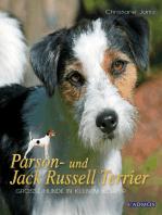Parson- und Jack Russell Terrier