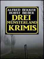 Drei Münsterland Krimis