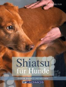 Shiatsu für Hunde: Energie, Balance und Wellness