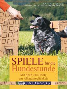 Spiele für die Hundestunde: Mit Spaß und Erfolg zur Alltagstauglichkeit