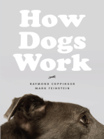 How Dogs Work