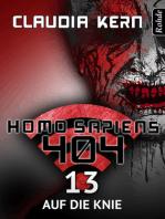 Homo Sapiens 404 Band 13