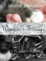 Winton's Strays