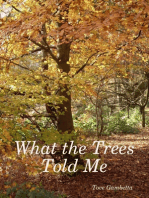 What the Trees Told Me