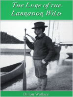 The Lure of the Labrador Wild