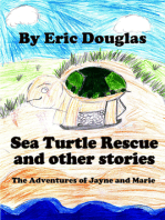 Sea Turtle Rescue and other stories