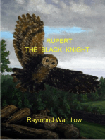 Rupert The Black Knight
