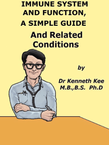 Immune System And Function, A Simple Guide And Related Conditions