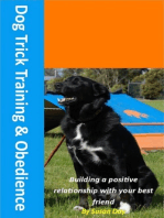 Dog Trick Training and Obedience