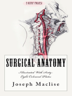 "Surgical Anatomy: ""With Sixty-Eight Coloured Plates"""