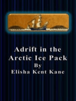 Adrift in the Arctic Ice Pack