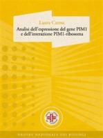 Analisi dell'espressione del gene PIM1 e dell'interazione PIM1-ribosoma