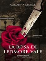 La rosa di Ledmore Vale