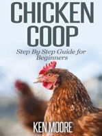 Chicken Coop Step By Step Guide for Beginners