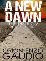 A New Dawn: The Districts, #3