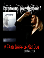 Paranormal Investigations 5