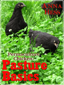 Pasture Basics: Permaculture Chicken, #2