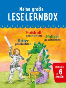 Meine große Leselernbox: Rittergeschichten, Fußballgeschichten, Polizeigeschichten: Mit 3 Lesestufen