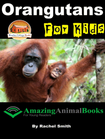 Orangutans For Kids