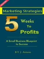 Marketing Strategies Five Weeks To Profits
