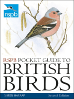 RSPB Pocket Guide to British Birds
