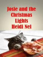 Josie and the Christmas Lights