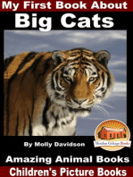 My First Book About Big Cats