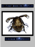 My First Book on Beetles