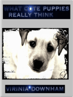 What Cute Puppies Really Think